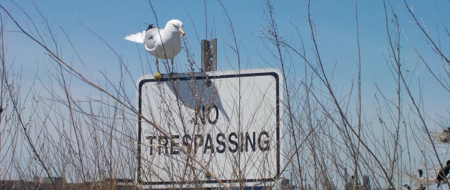 premise liability no trespassing sign